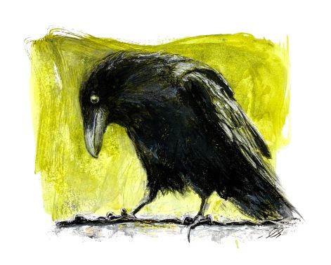 "Raven on Tin Roof 14"" x 16"" on paper"