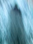 P1050055 blue s
